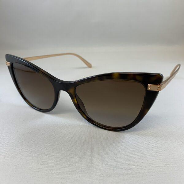 Dolce e Gabbana DG4381 502/13